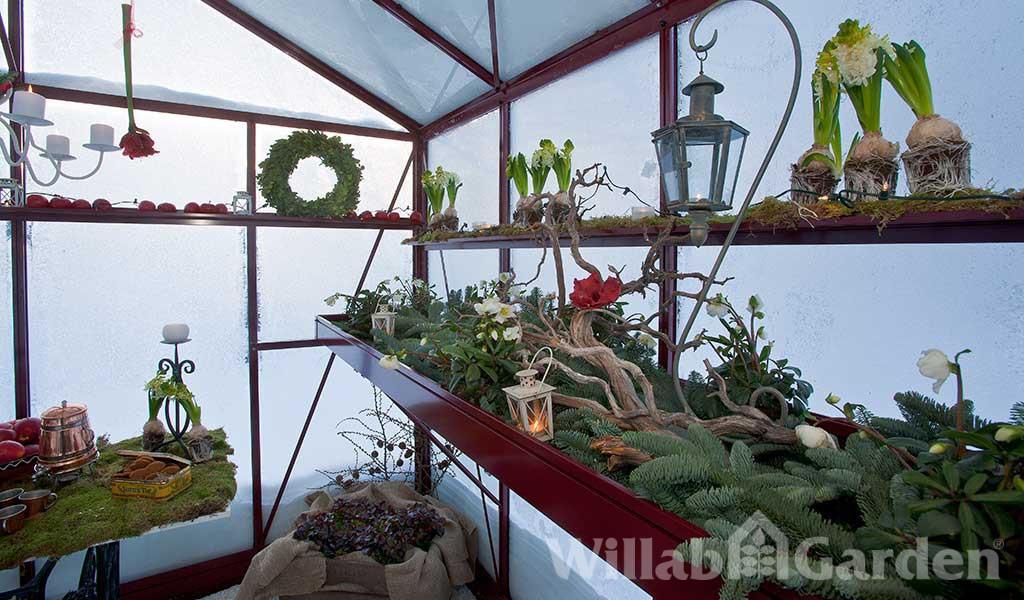 Vinter i växthus